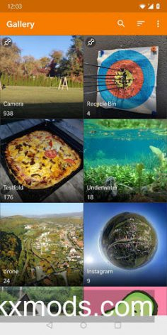 Simple Gallery Pro v6.6.1 [Paid/Mod]