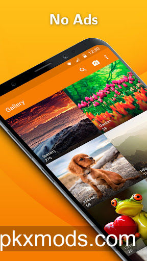 Simple Gallery Pro: Photo Manager & Editor v6.18.2 [Paid]